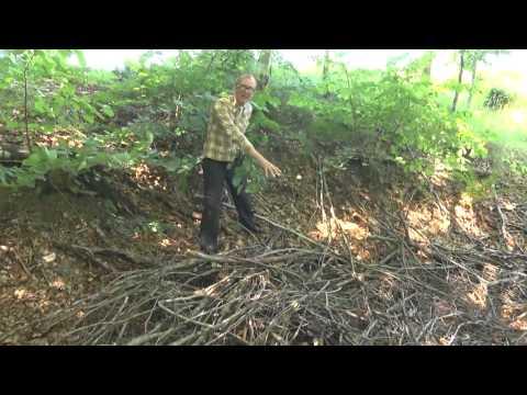 Landmanden del 1 – bygger overlevelses hule