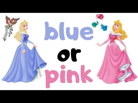 sleeping beauty's dress: blue or pink? 👑🌷🧚🏻♀️