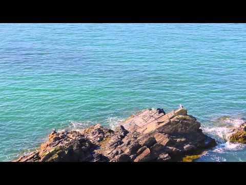 ARTHUR COMEAU   METEGHAN OFFICIAL VIDEO