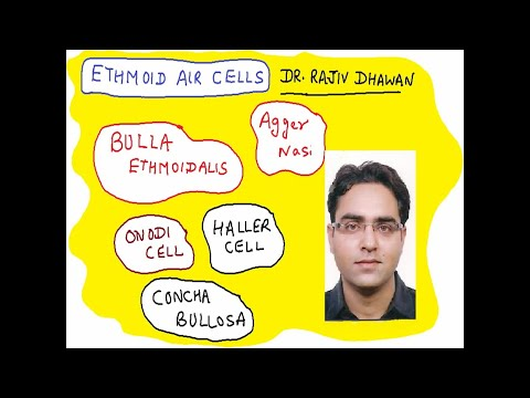 DR. Rajiv Dhawan      LETS MAKE ETHMOID AIR CELLS EASY TO UNDERSTAND ( for UG  Medical students)