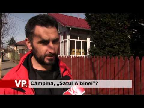 """Câmpina, """"Satul Albinei""""?"""