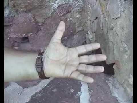 Posturas de la mano en la morra