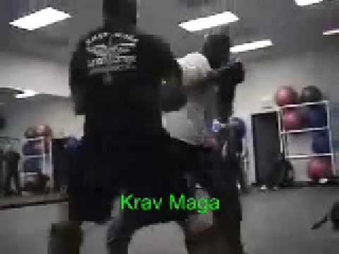 Bujinkan Budo Taijutsu: Combat Martial Art?