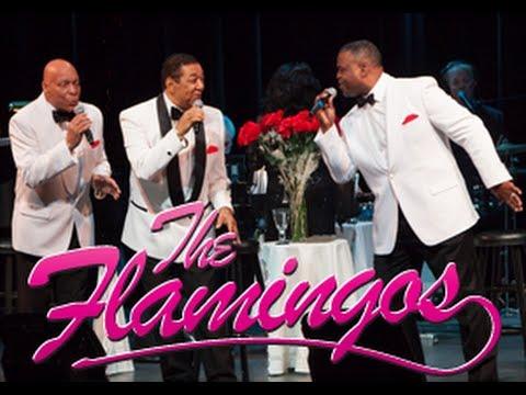 Tekst piosenki The Flamingos - Begin the Beguine po polsku