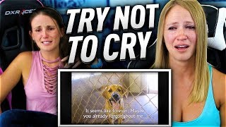 """Jenny and I attempt the try not to cry impossible challenge!Get cheap, instant coins at FIFACOIN - https://t.co/w76IRXMc64 and use Fangs for a 5% discount! Please sub to my daily vlog channel ! https://goo.gl/nzXKyqGet a Fangs shirt and more here! https://goo.gl/PsqfSZ Captured with Elgato Game Capture HD - http://e.lga.to/ItsFangs  Check out Maingear for a custom built PC and use """"Fangs"""" for a FREE 2 year  warranty ! https://goo.gl/pq541Q    GTOmega Racing Office Chairs here! Fangs for 5% discount!  http://goo.gl/Xr60gy      THE ULTIMATE UK VS USA !! FANGS VS MINIMINTER !! https://www.youtube.com/watch?v=nnwtlwJ-4UM  OMFG!! I PACKED MESSI !! FIFA 17 ULTIMATE TEAM !!  https://www.youtube.com/watch?v=yuKGrAchbe4 THE CEREAL BATH FORFEIT FUTDRAFT !! FIFA 17 ULTIMATE TEAM https://www.youtube.com/watch?v=Ne2VD4KG5TQ  Please do not forget to hit the like button :D  http://www.twitch.tv/fang_i3anger  https://twitter.com/ItsFangs    I hope you enjoy, and if so please do not forget to hit the like and sub  button."""