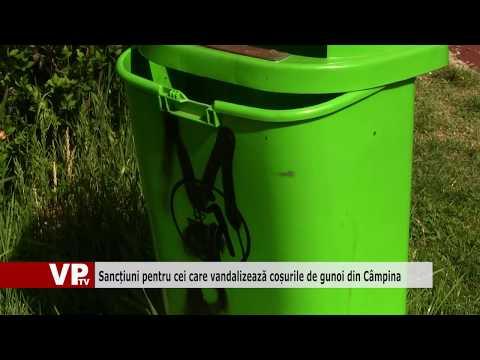 Sancțiuni pentru cei care vandalizează coșurile de gunoi din Câmpina
