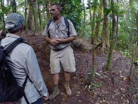 bombs - http://cnet.co/1nkzDly To find unmarked graves thought to hold the bodies of POWs, missionaries, and others executed in the Palauan jungle by the Japanese du...