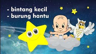 Video Lagu Bintang Kecil dan Burung Hantu - Lagu Anak Indonesia Populer MP3, 3GP, MP4, WEBM, AVI, FLV Januari 2019