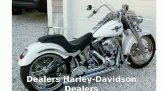 4. 2006 Harley-Davidson Softail Fat Boy Features, Info