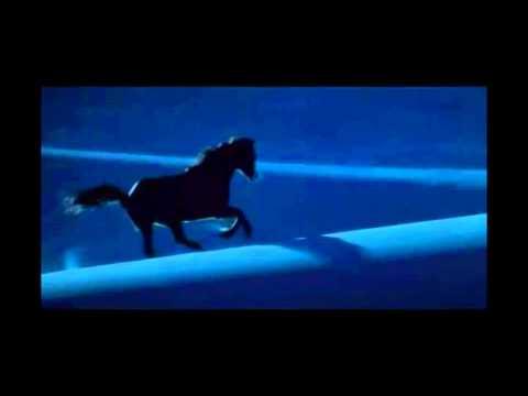 The horse whisperer - Antonis Logothetis