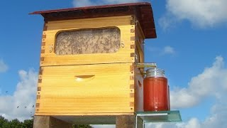 "Amazing Invention Called ""Flow Hive"""