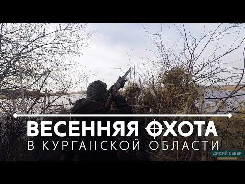 Весенняя охота на боровую дичь на токах в Курганской области!