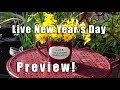 PREVIEW | Going LIVE New Year's Day! | Kaye KittrellPREVIEW | Going LIVE New Year's Day! | Kaye Kittrell<media:title />