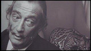 Figueres (Girona), 20 jul (EFE).- Los restos de Salvador Dalí, que tras su muerte fue embalsamado y enterrado en una cripta en el...