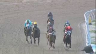 Move (PA), 1/2 Sister Finest City & Grand Prix, MSW Win Penn National Apr 4, 2017