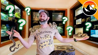 SNAKE CHALLENGE - Which one is Deadliest?! by Brave Wilderness