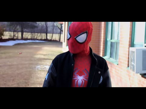The Avenging Spider-Man (Fan Film)