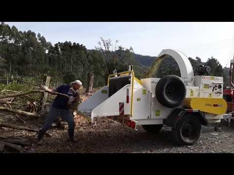 Picador / Triturador de troncos e galhos Lippel - PTU 300 processando galhadas