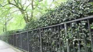 Download Lagu Walk through Green Park in London to Green Park Tube Station Mp3