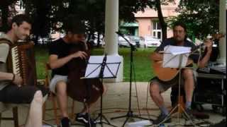 Video Igor Barboi trio 2