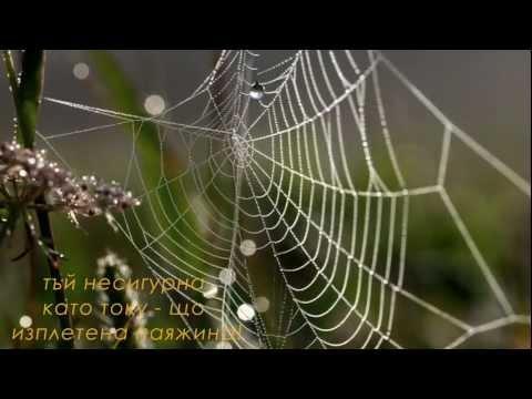 Sebastian Bach - Falling Into You lyrics