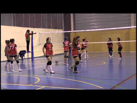 Navarvoley VS CD Ibararte 010314