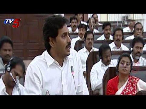 AP Budget 2014   Jagan Argument on Crop Loan Waiver : TV5 News