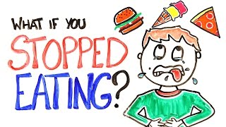 Download Youtube: What If You Stopped Eating?