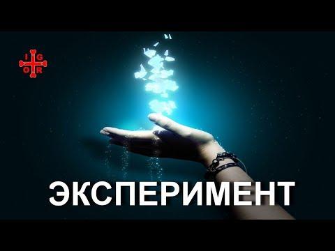 Video ЭКСПЕРИМЕНТ! ЧУДО! БЕСПЛАТНО! (28.08.17) download in MP3, 3GP, MP4, WEBM, AVI, FLV January 2017