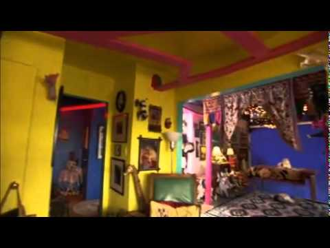 Most Outrageous: The Cat\'s House