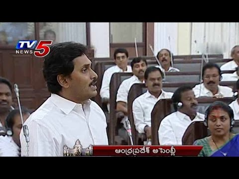 APs Law & Order | Jagan Fires On TDP Ministers In AP Assembly : TV5 News
