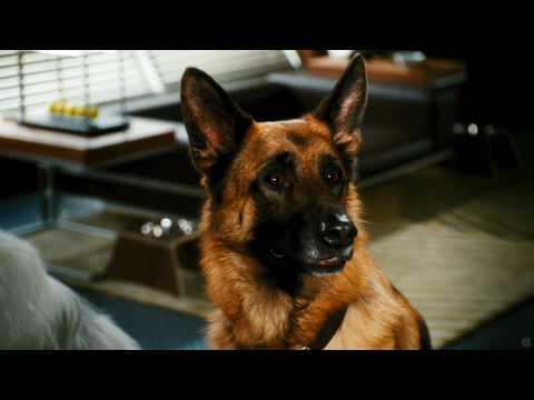 Como Perros y Gatos 2: La Venganza De Kitty Galore - Trailer Latino - Full HD