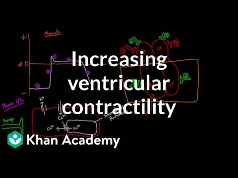 Increasing ventricular contractility - inotropic effect | NCLEX-RN | Khan Academy
