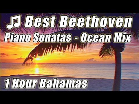 CLASSICAL MUSIC for Studying Long Playlist 1 HOUR BEETHOVEN Piano Sonatas Instrumental Study Songs