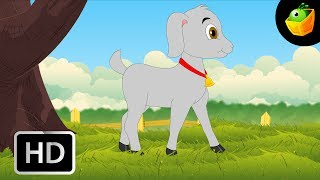 Aattu Kutty - Goat Kid - Children Tamil Nursery Rhymes Chellame Chellam Volume  6