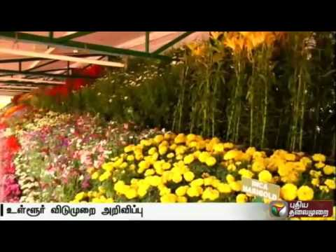 Ooty-flower-show-from-May-27