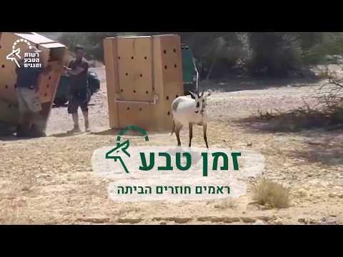 טבע בישראל