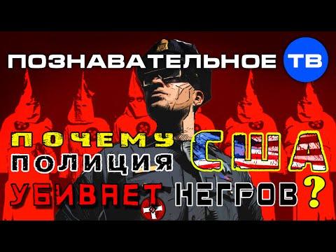 Почему полиция США убивает негров (Познавательное ТВ Артём Войтенков) - DomaVideo.Ru