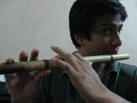 Flute sweet tune lesson.wmv ( please comment on my effort)