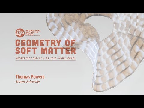 Shapes of Colloidal Membranes - Thomas Powers