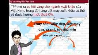 Học Kinh Tế 3 - Mặt Hàng Xuất Khẩu Chủ Lực Của Việt Nam Là Gì ? Xuất Vào Nước Nào Nhiều Nhất ?