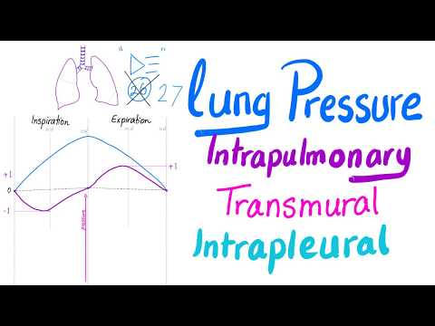 Lung Pressures (Intrapulmonary, Intrapleural and Transmural Pressures) | Lung Physiology