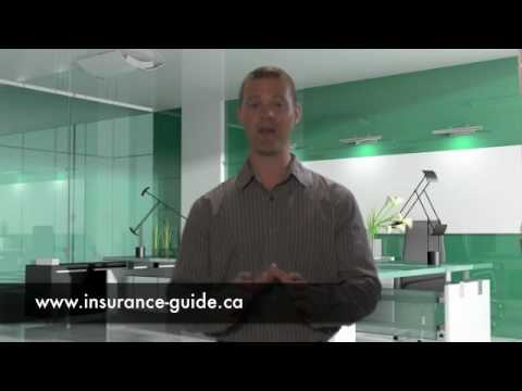 Ingersoll Auto Insurance Amazing Free Guide