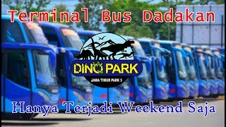 Video Jadi Terminal Dadakan!! Sampai Gantian Parkir | Bus-bus di Jawa Timur Park 3 Malangj MP3, 3GP, MP4, WEBM, AVI, FLV November 2018