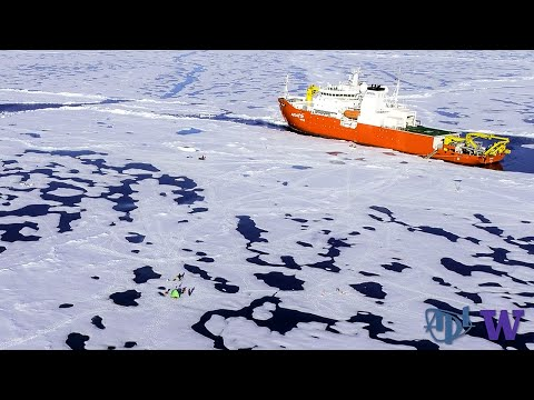 Waves Pound Disappearing Sea Ice