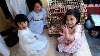 Video Moment Lebaran Hari Pertama di Rumah Nenek, Senangnya Berbagi MP3, 3GP, MP4, WEBM, AVI, FLV Juli 2019