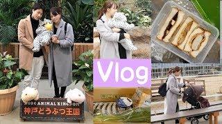 Vlog:なんでもない一日🌞サンドイッチ作り▶︎息子と初めての動物園▶︎スーパー購入品 🍞