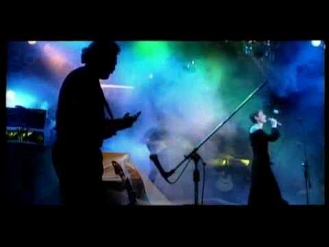Tekst piosenki Varius Manx - Wolne Ptaki po polsku