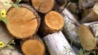 Video Splitting Wood for Winter Heat MP3, 3GP, MP4, WEBM, AVI, FLV Juli 2018