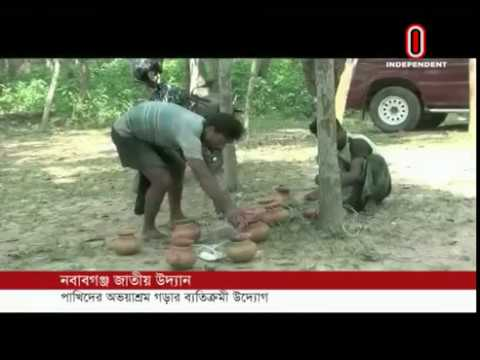 Five thousand earthen pots put on trees to save the birds (21-10-18) Courtesy: Independent TV